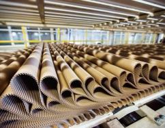 В Иркутской области постоят завод по производству картона